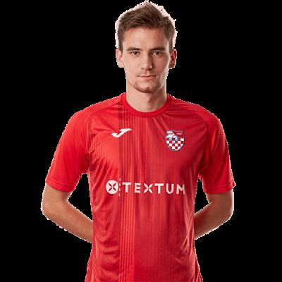 Luka Čanković